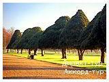 День 8 - Лондон - Хемптон Корт - Виндзорский замок