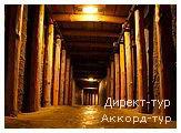 День 6 - Львов - Оломоуц - Величка