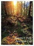 День 1 - Ворохта - Львов - Яремче - Ивано-Франковск